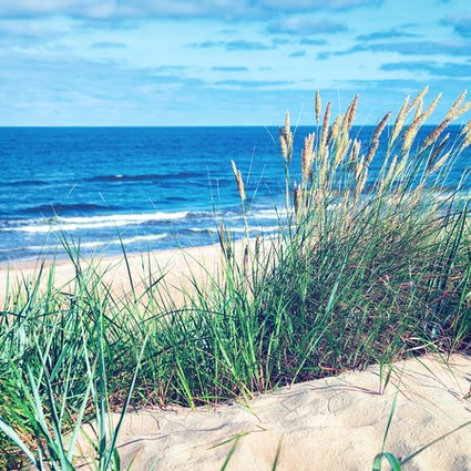 Lithuania's best-kept secret beaches