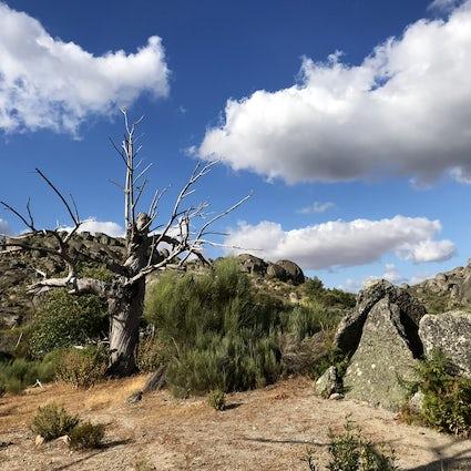 The dolmens' route in Valencia de Alcántara- a journey to the past