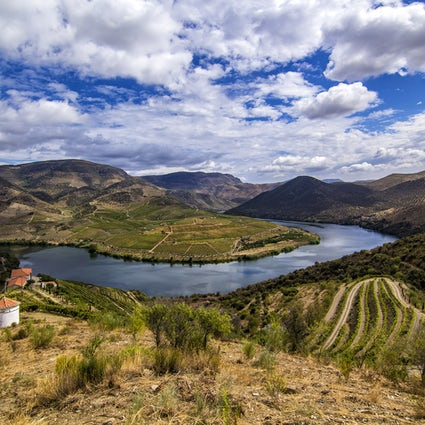A memorable trip around the Côa Valley