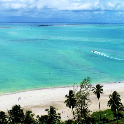 Ponta de Mangue, the Brazilian Caribbean in Alagoas