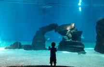 Genova, a kids paradise