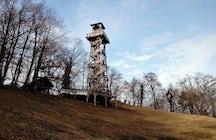 El esloveno Stolp ljubezni: Una torre donde crece el amor