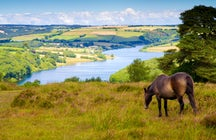 Exmoor National Park - peaceful beauty