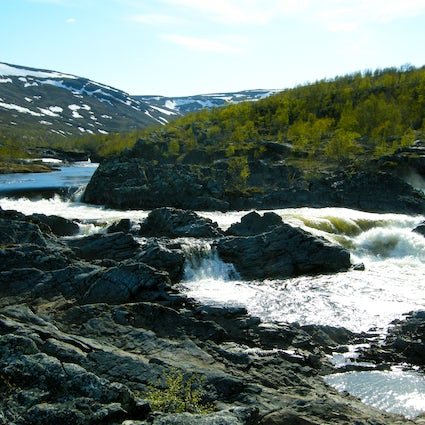 The far north national park in Norway called Stabbursdalen