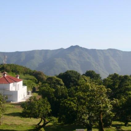 Un viaje a Madeira - Fanal