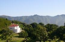 A Trip to Madeira - Fanal