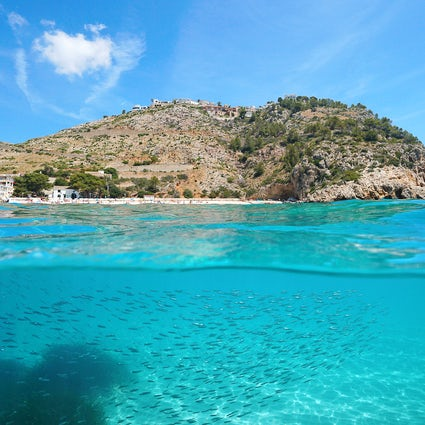 Scuba diving in Javea