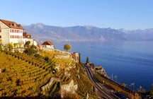 Lavaux - where vineyards dive into the lake