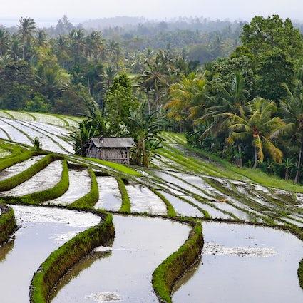 Atracciones secretas del suroeste de Bali