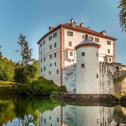 Castillo de Snežnik - fiestas, osos y bodas
