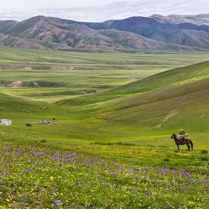 Experimentando el espíritu kazajo - Meseta de Assy