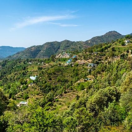 Nature, adventure & excitement at Mukteshwar