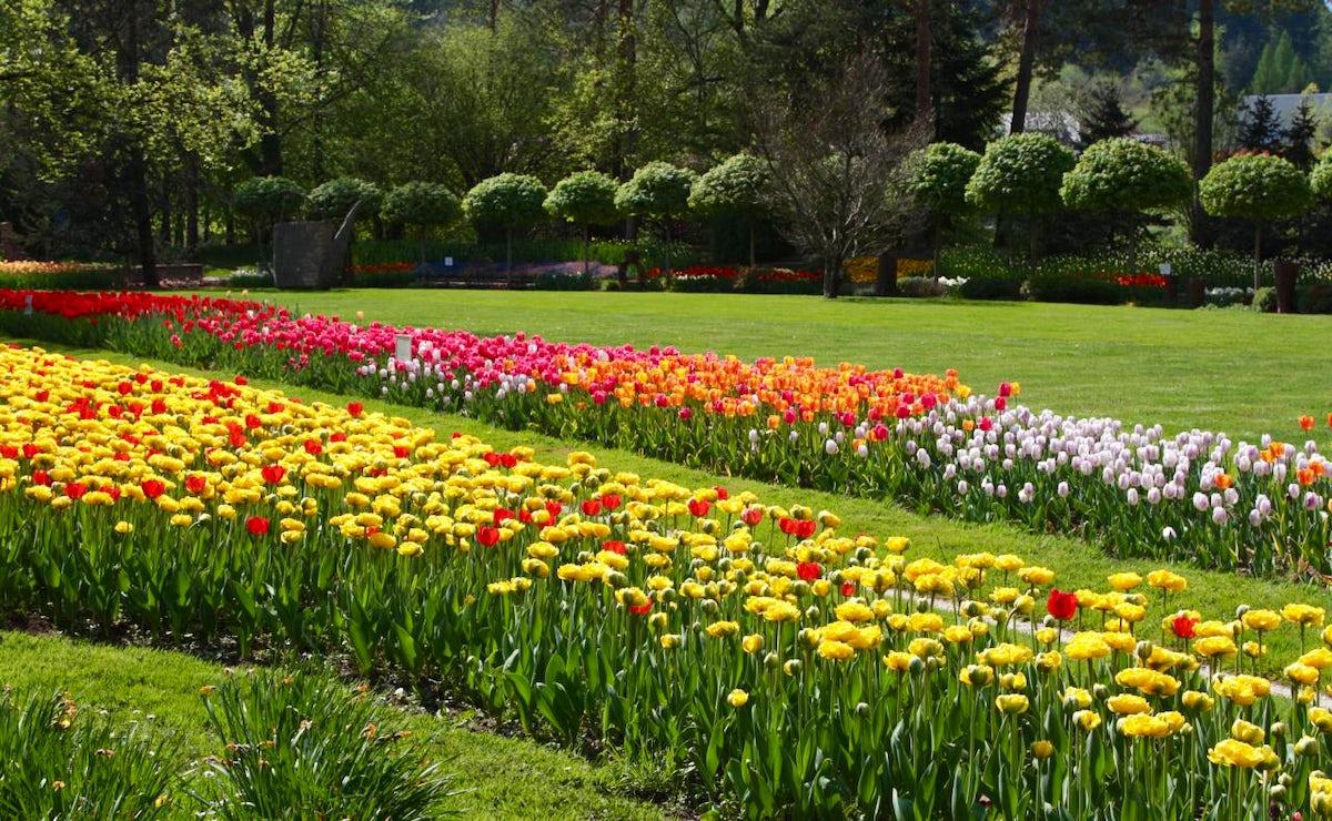 Flower power – arboretums in Slovenia