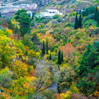 Relax in Georgia's National Botanical Garden, Tbilisi