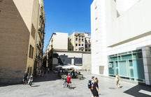 Best Vegan Places in El Raval, Barcelona