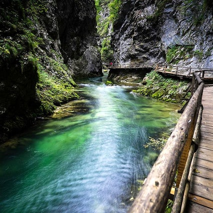 The beauty of nature in Vintgar Gorge
