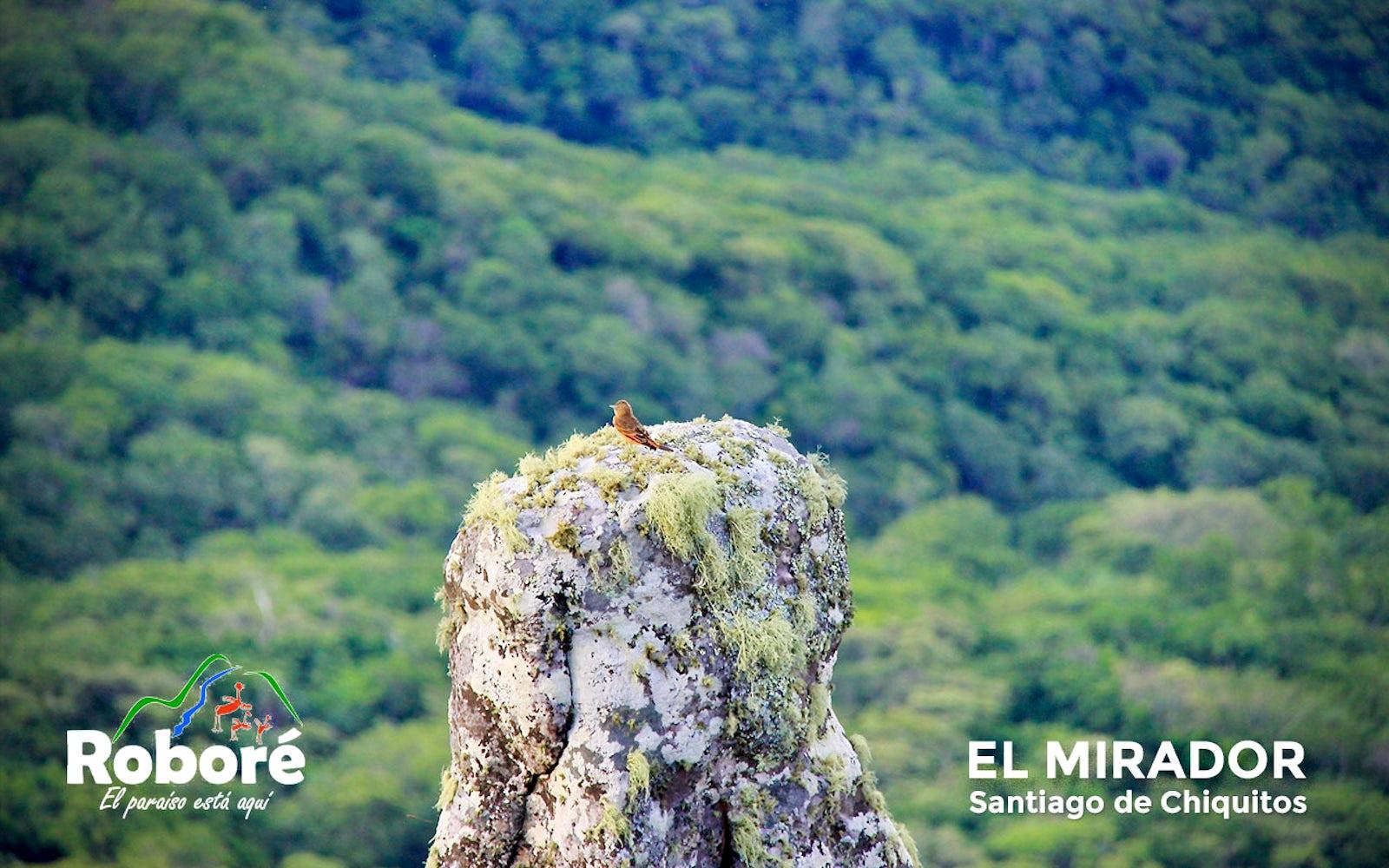 © CEPAD-FELCODE/Enrique Rodríguez