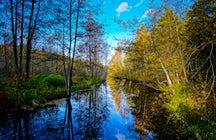 Natural Swedish beauty called Tyresta national park