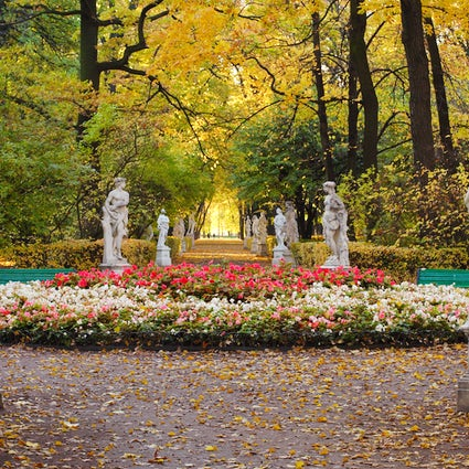 Summer Garden in Saint Petersburg: flowers and sculptures