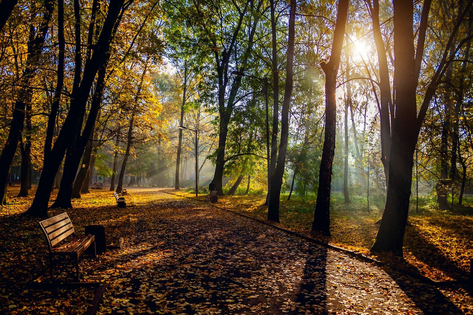 Foto © Créditos a iStock/Sergii Zyskо