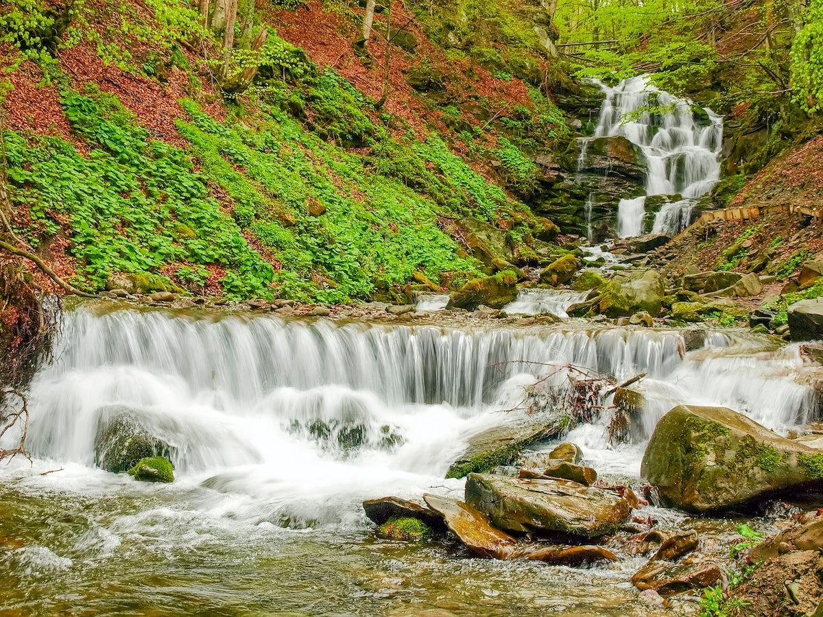 Picture © Credits to iStock/Zakarpattia
